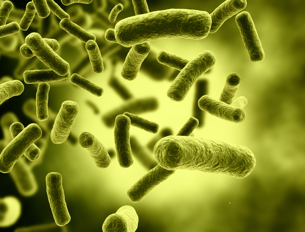 Metabolites Formed By Intestinal Microbiota Might Be Fatal In CKD Patients