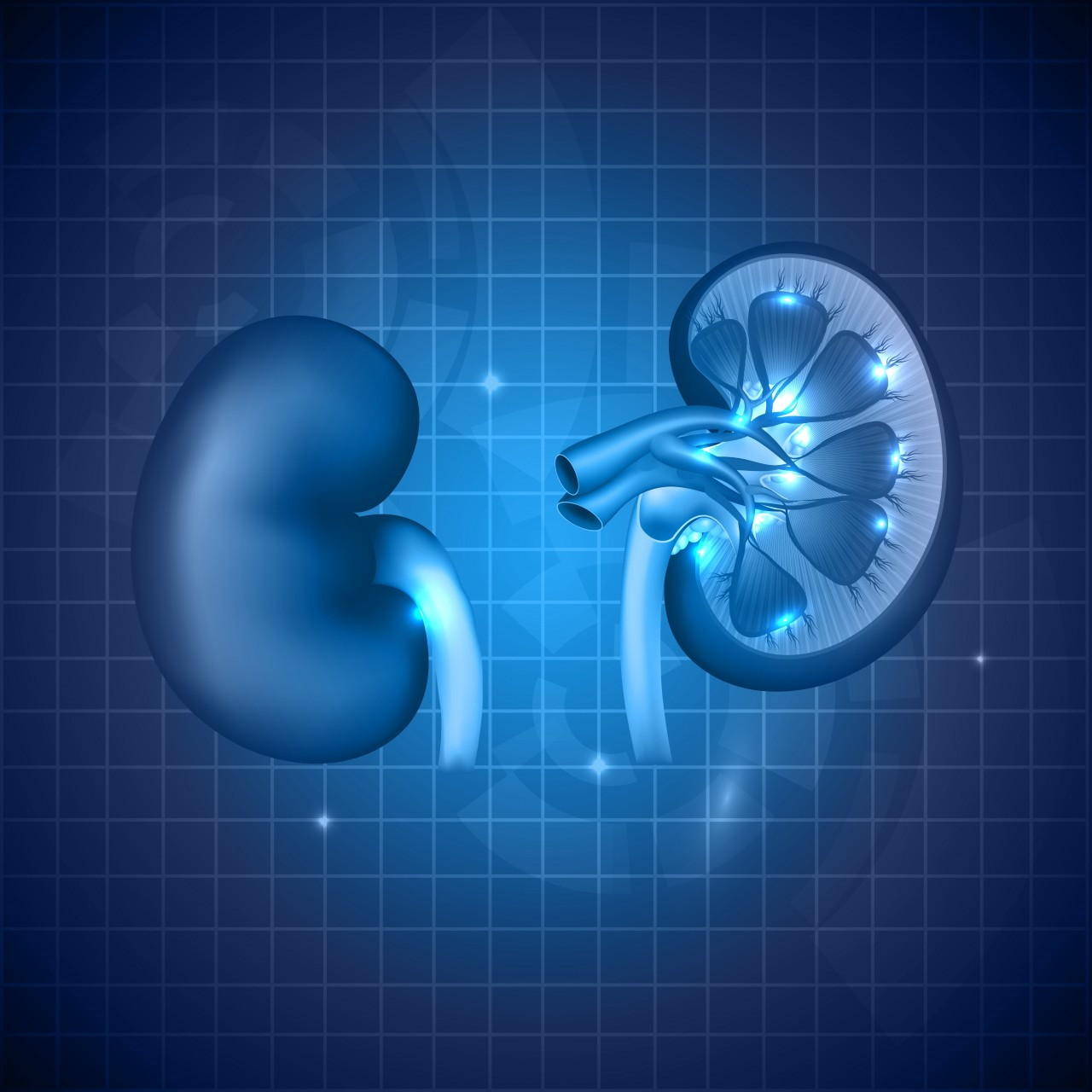 Resistant microbes in CKD patients are rising