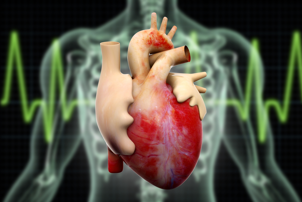CKD and cardiac health