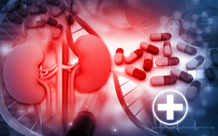 Vonapanitase Misses Key Target in Chronic Kidney Disease Blood-Flow Study