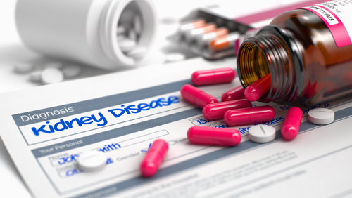 Specific Inhibitors Can Be Harmful in Kidney Disease Patients, Study Finds